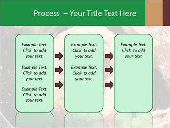 0000084956 PowerPoint Templates - Slide 86