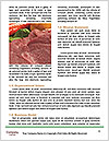 0000084956 Word Template - Page 4