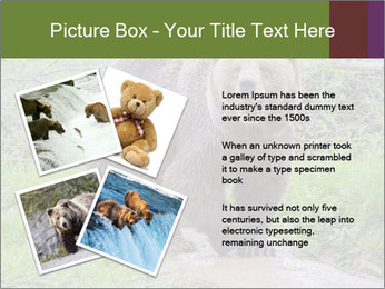 0000084966 PowerPoint Templates - Slide 23