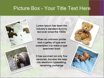 0000084966 PowerPoint Templates - Slide 24