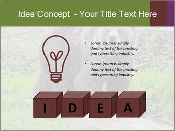 0000084966 PowerPoint Templates - Slide 80