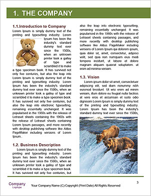 0000084966 Word Template - Page 3