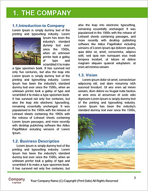 0000084979 Word Template - Page 3