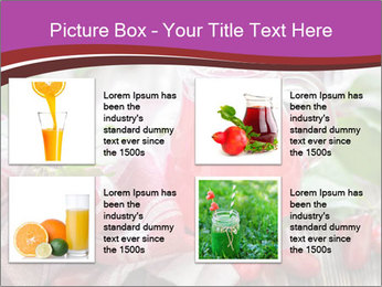 0000084983 PowerPoint Template - Slide 14