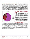 0000084983 Word Template - Page 7