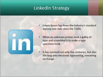 0000084989 PowerPoint Templates - Slide 12