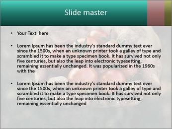 0000084989 PowerPoint Templates - Slide 2