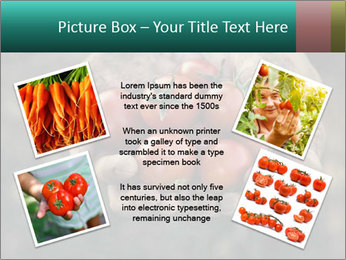 0000084989 PowerPoint Templates - Slide 24