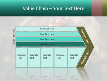 0000084989 PowerPoint Templates - Slide 27