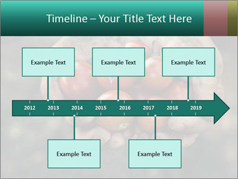 0000084989 PowerPoint Template - Slide 28