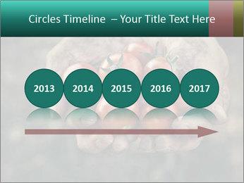 0000084989 PowerPoint Templates - Slide 29