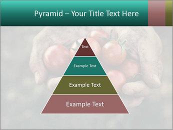 0000084989 PowerPoint Templates - Slide 30
