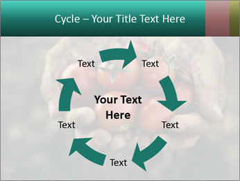 0000084989 PowerPoint Template - Slide 62
