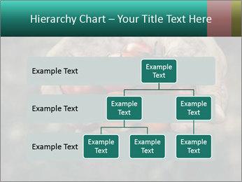 0000084989 PowerPoint Templates - Slide 67