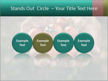 0000084989 PowerPoint Template - Slide 76