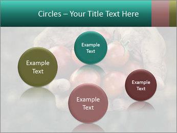 0000084989 PowerPoint Templates - Slide 77