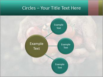 0000084989 PowerPoint Template - Slide 79