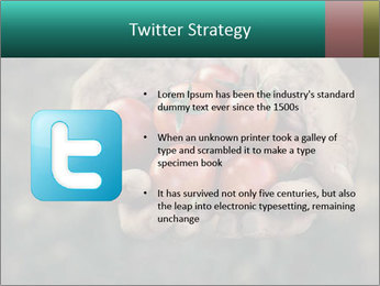 0000084989 PowerPoint Templates - Slide 9