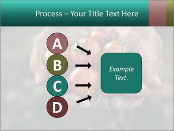 0000084989 PowerPoint Templates - Slide 94
