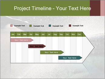 0000084993 PowerPoint Template - Slide 25