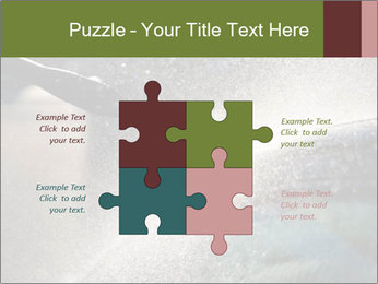 0000084993 PowerPoint Template - Slide 43