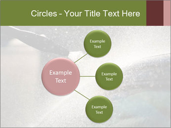 0000084993 PowerPoint Template - Slide 79