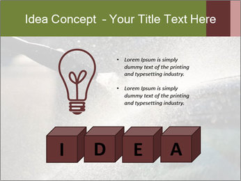 0000084993 PowerPoint Template - Slide 80