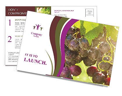 0000085003 Postcard Template