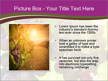 0000085003 PowerPoint Template - Slide 13
