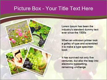 0000085003 PowerPoint Template - Slide 23