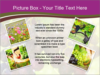 0000085003 PowerPoint Template - Slide 24