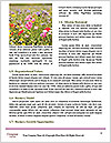 0000085003 Word Templates - Page 4