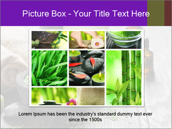 0000085006 PowerPoint Template - Slide 16