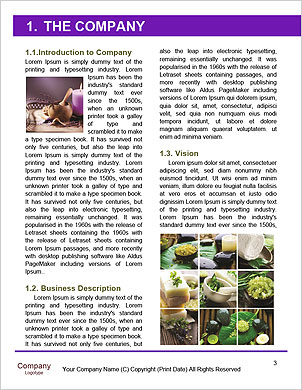 0000085006 Word Template - Page 3