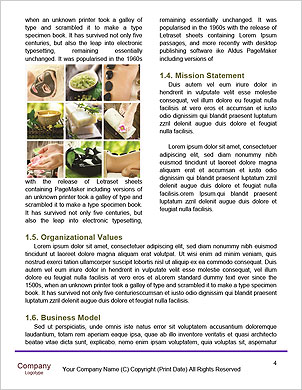 0000085006 Word Template - Page 4