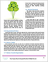 0000085008 Word Templates - Page 4