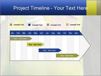 0000085010 PowerPoint Templates - Slide 25
