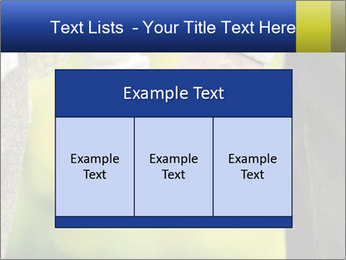 0000085010 PowerPoint Template - Slide 59