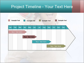 0000085018 PowerPoint Template - Slide 25