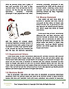 0000085021 Word Template - Page 4