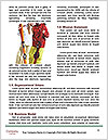 0000085026 Word Templates - Page 4