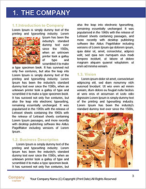 0000085028 Word Template - Page 3