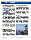 0000085031 Word Template - Page 3