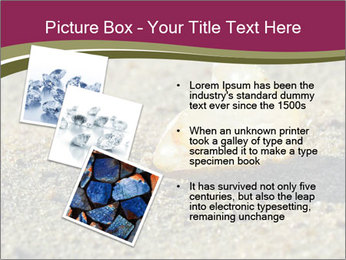 0000085036 PowerPoint Template - Slide 17