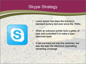 0000085036 PowerPoint Template - Slide 8