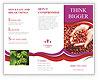 0000085041 Brochure Templates