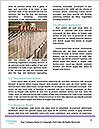 0000085044 Word Templates - Page 4
