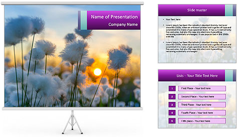 0000085046 PowerPoint Template