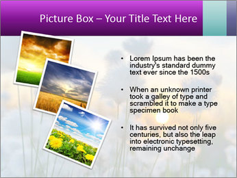 0000085046 PowerPoint Template - Slide 17