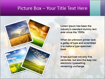 0000085046 PowerPoint Template - Slide 23